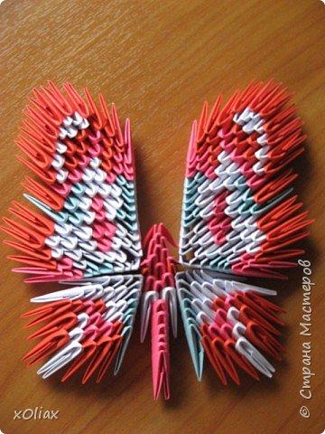 Оригами модульное: Бабочка (5)