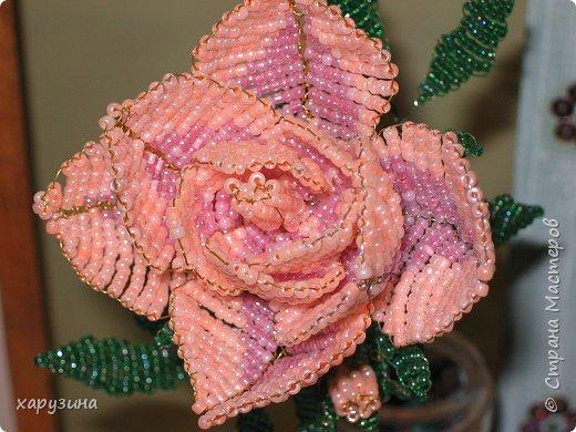 Цветы в день рождения фото 2