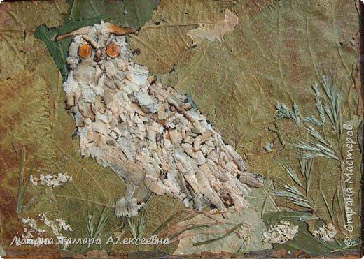 Фантазии на тему птиц из разнообразного материала фото 10