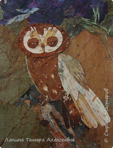 Фантазии на тему птиц из разнообразного материала фото 12