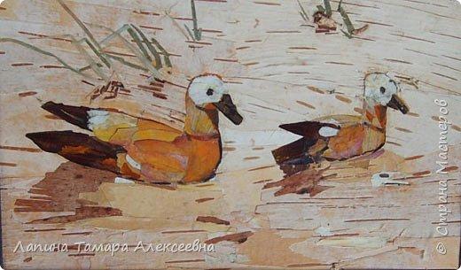 Фантазии на тему птиц из разнообразного материала фото 1