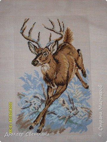 Вышивка крестом: Лесной олень