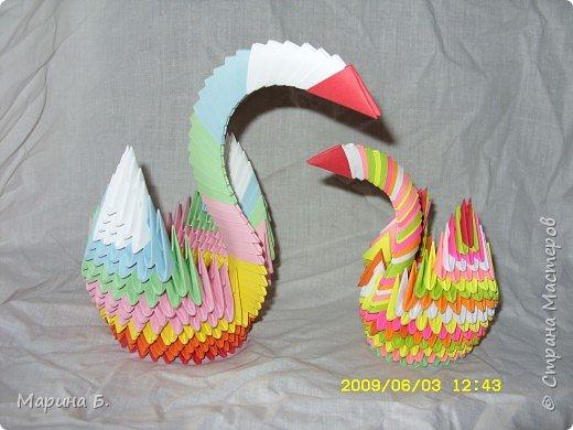 Оригами модульное: Лебеди фото 3