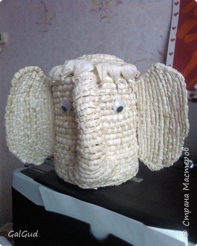 "Плетение: Шкатулка ""слонёнок"""
