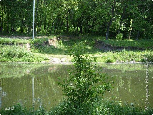 Река такая разная,в один и тот же момент времени.То голубая... фото 2