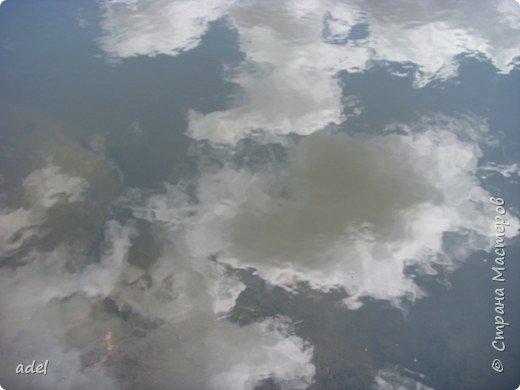 Река такая разная,в один и тот же момент времени.То голубая... фото 5