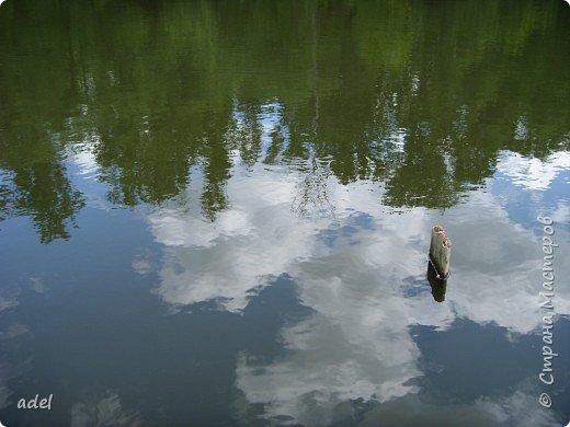 Река такая разная,в один и тот же момент времени.То голубая... фото 6