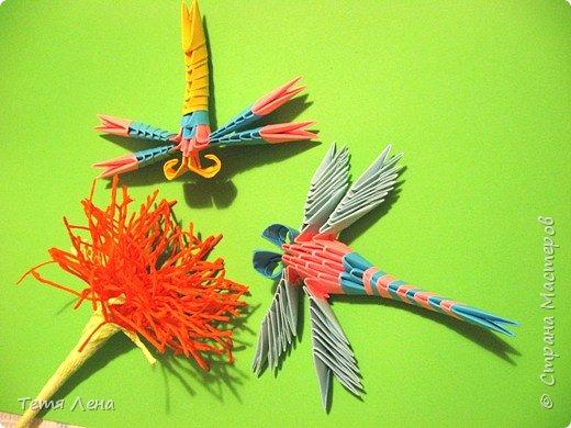 Оригами модульное: Стрекозки