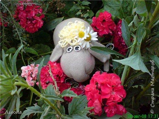 Шитьё: Влюбленная овечка:)) фото 2