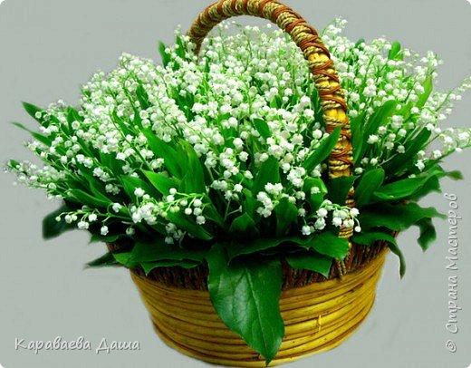 С Днем Рождения, Татьяна Николаевна!