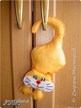 Котик на дверь