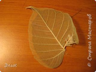 Аппликация: Бабочка фото 2