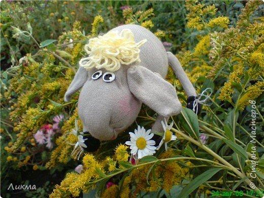 Шитьё: Влюбленная овечка:)) фото 3