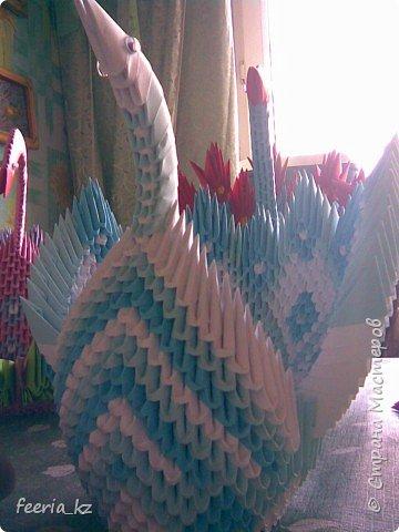 Оригами модульное: Пополнение среди павлинов фото 2