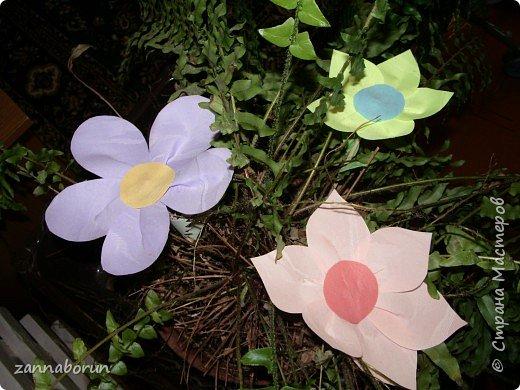 Оригами: ЗАЦВЕЛИ ТЮЛЬПАНЫ НА ОКНЕ фото 5