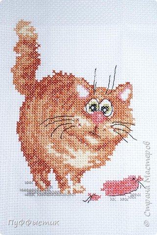 Вышивка крестом: Васька кот