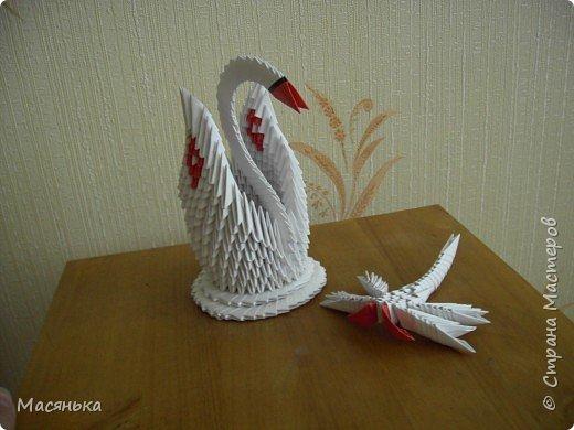 Оригами модульное: Лебедь и стрекозы фото 1