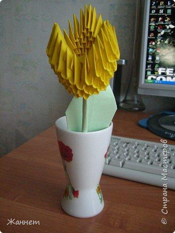 Оригами модульное: Тюльпан