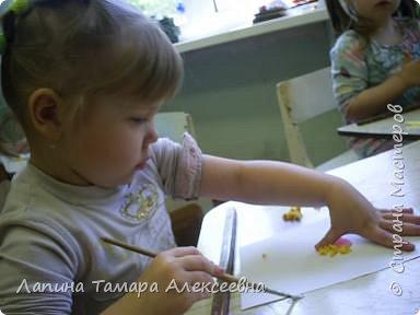 Выставка цветов фото 4