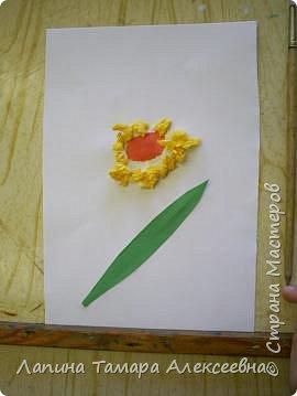 Выставка цветов фото 6
