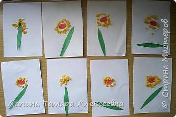 Выставка цветов фото 1