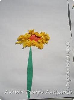 Выставка цветов фото 7