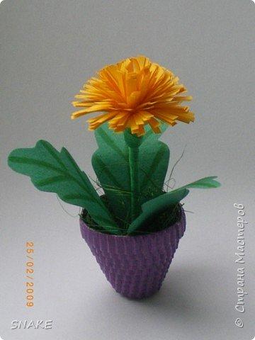 Квиллинг: Цветики-цветочки фото 3