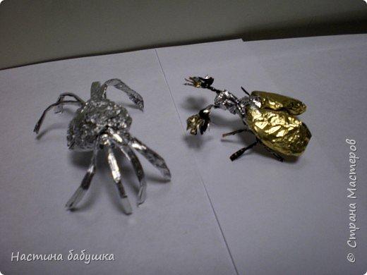 Паук и жук.