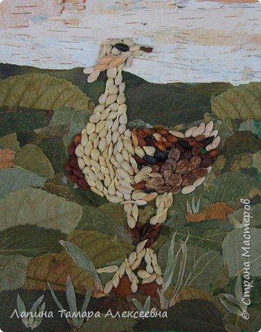 Фантазии на тему птиц из разнообразного материала фото 6
