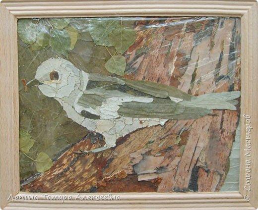 Фантазии на тему птиц из разнообразного материала фото 3