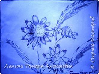 Цветы простым карандашом фото 1