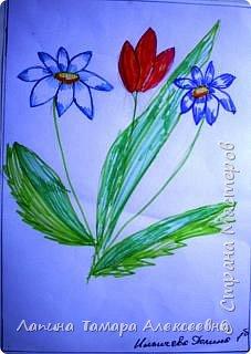 Цветы фломастерами  фото 3