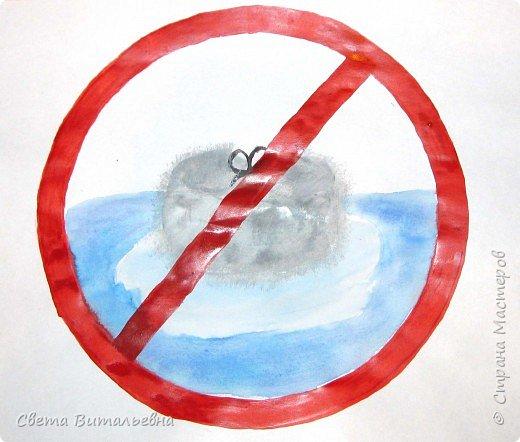 """25 мая в экологических календарях отмечен как """"День Нерпенка"""".  фото 2"""
