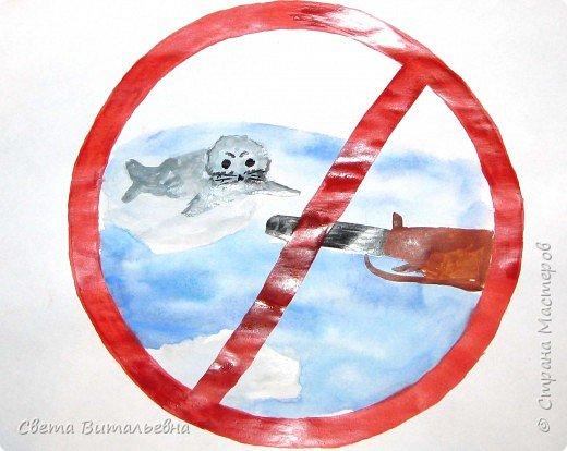 """25 мая в экологических календарях отмечен как """"День Нерпенка"""".  фото 1"""