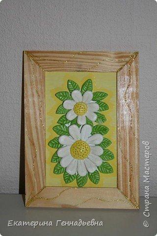Цветы в подарок. фото 1