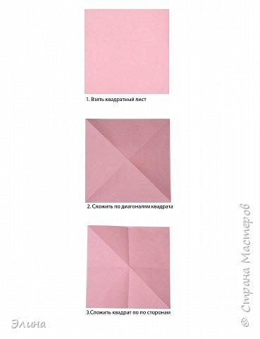 """Оригами: Мастер класс """"Как сделать розу"""". фото 1"""