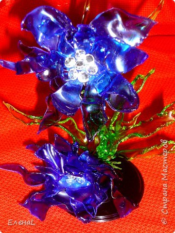Голубой цветок фото 1