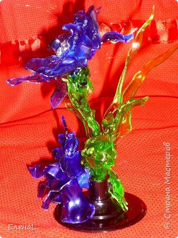 Голубой цветок фото 2