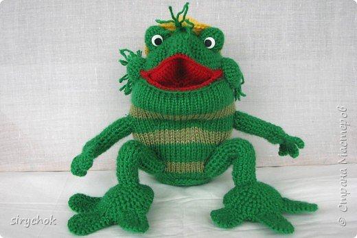 Вязаная жаба