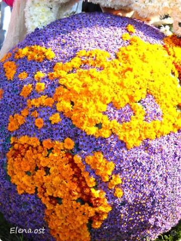 Герб города. Это День города Запорожья. Такие выставки цветов  проходят каждый год. При копировании статьи, целиком или частично, пожалуйста, указывайте активную ссылку на источник! http://stranamasterov.ru/user/9321 http://stranamasterov.ru/node/23202 фото 9