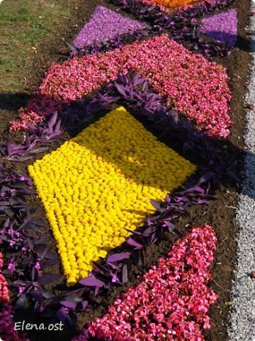 Герб города. Это День города Запорожья. Такие выставки цветов  проходят каждый год. При копировании статьи, целиком или частично, пожалуйста, указывайте активную ссылку на источник! http://stranamasterov.ru/user/9321 http://stranamasterov.ru/node/23202 фото 11