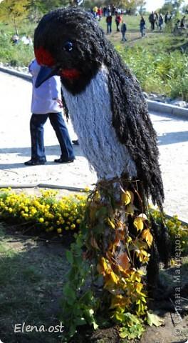 Герб города. Это День города Запорожья. Такие выставки цветов  проходят каждый год. При копировании статьи, целиком или частично, пожалуйста, указывайте активную ссылку на источник! http://stranamasterov.ru/user/9321 http://stranamasterov.ru/node/23202 фото 16