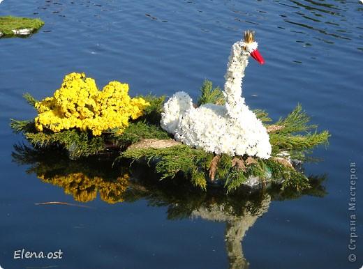 Герб города. Это День города Запорожья. Такие выставки цветов  проходят каждый год. При копировании статьи, целиком или частично, пожалуйста, указывайте активную ссылку на источник! http://stranamasterov.ru/user/9321 http://stranamasterov.ru/node/23202 фото 3