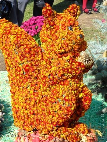 Герб города. Это День города Запорожья. Такие выставки цветов  проходят каждый год. При копировании статьи, целиком или частично, пожалуйста, указывайте активную ссылку на источник! http://stranamasterov.ru/user/9321 http://stranamasterov.ru/node/23202 фото 6