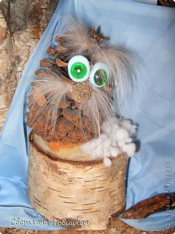 Этот старичок Лесовичок сделан из большой кедровой шишки. Подарок мне от моей племянницы Алисы.