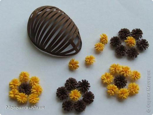 Пчела фото 4