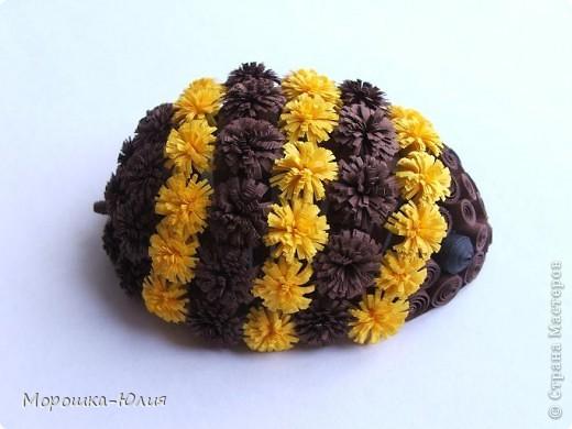 Пчела фото 6