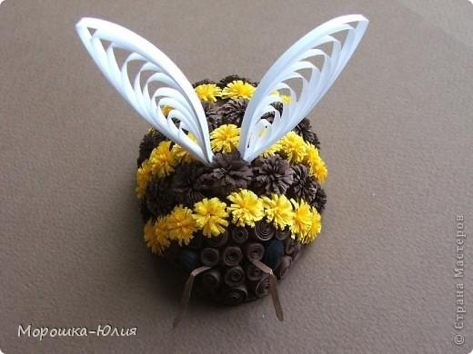 Пчела фото 10