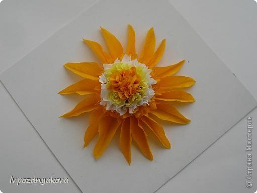 Цветочек Солнышко. фото 1