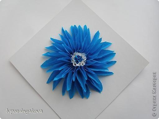 Цветочек Солнышко. фото 2